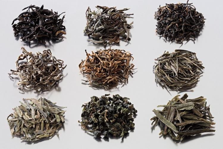 Выбираем самый полезный сорт чая