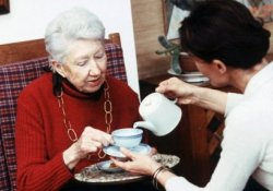Черный чай поможет укрепить кости