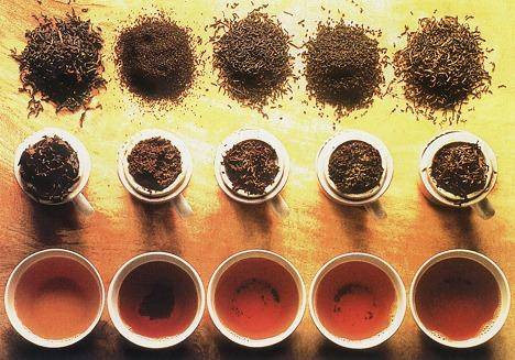 Популярные сорта чая и их полезные свойства