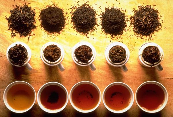 Виды чая и его основные особенности