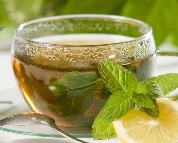 Три вида чая, которые особенно полезные женщинам