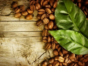 Чай из кофейных листьев и его польза