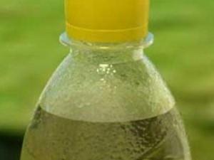 Зеленый чай в бутылках может навредить здоровью