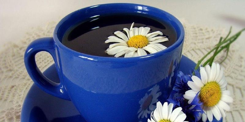 Чай из ромашки и его польза