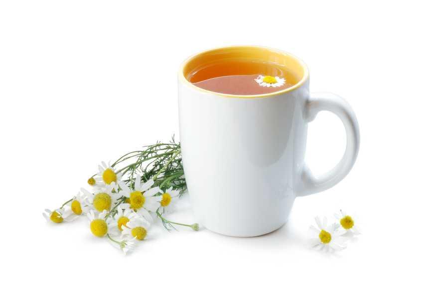 Чай с ромашкой может навредить организму