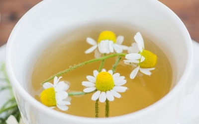 Ромашковый чай полезен для диабетиков