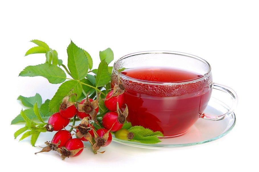Полезные свойства чая с шиповником