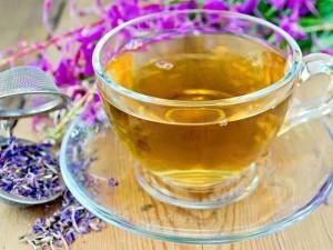Иван-чай и его полезные свойства