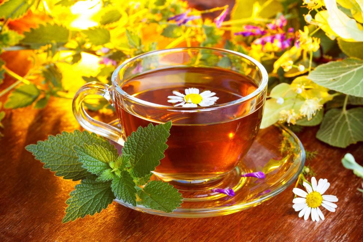Готовим чай на травах