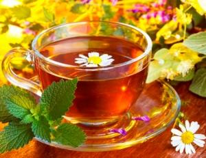 Готовим травяные чая против остеохондроза