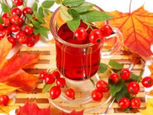 Рецепты витаминного чая