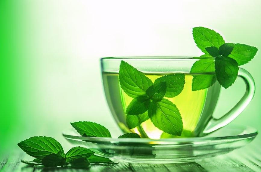 Мятный чай полезен для организма