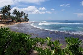 Шри-Ланка – остров мечты