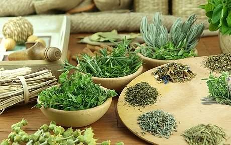 Какие травяные сборы помогут при гипертонии