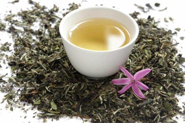 Белый чай способен обуздать эпидемию ожирения