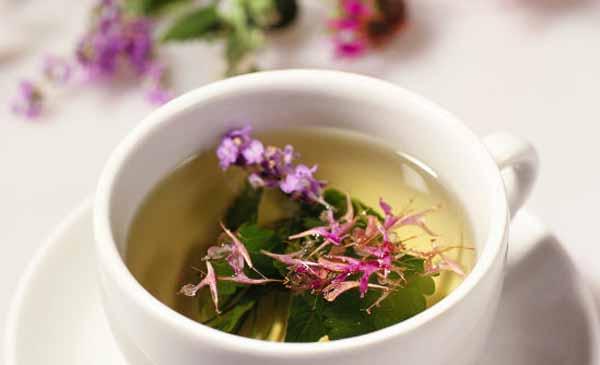 Свойства натурального «Иван чая»