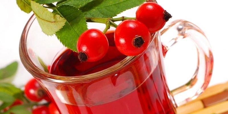 Шиповник при отравлениях — польза, применение и рецепты