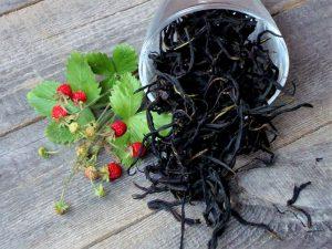 Китайские ученые узнали, что лечит иван-чай