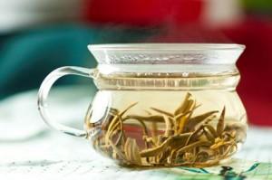Зеленый чай защищает почки от повреждений, вызванных лечением рака