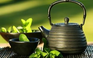 Ученые: Зеленый чай защищает от СПИДа и рака