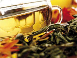 Целебный чай будут выпускать в Ингушетии
