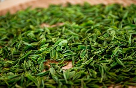 Зеленый чай эффективен в плане лечения рака простаты