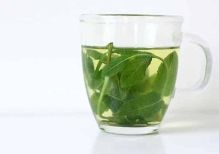 Чай из мяты помогает при циррозе печени