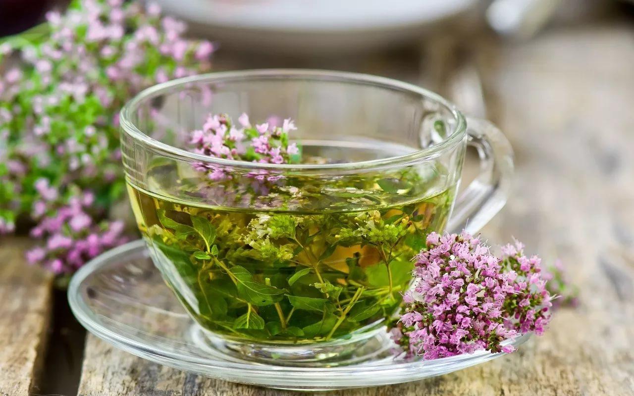 Учёные: травяной чай может нанести вред здоровью