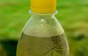 Чай в бутылках провоцирует образование камней в почках