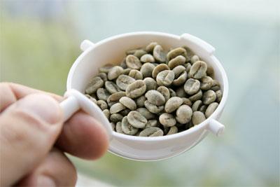 Способы заваривания зеленого кофе