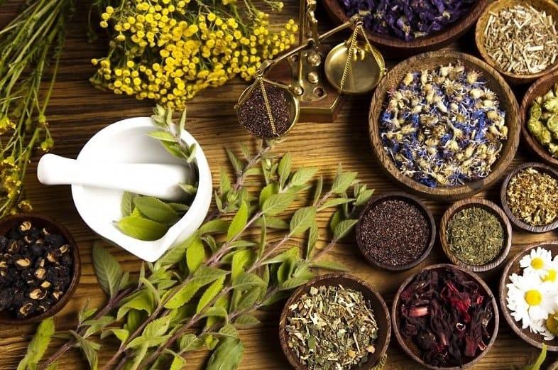 Травяной чай может разрушить печень и привести к раку