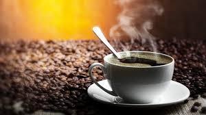 Молодая кофейная компания «True Coffee»