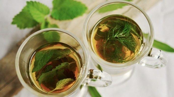 Китайские ученые расшифровали геном чая