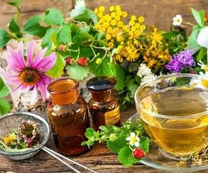 Потребление травяного чая может быть опасным