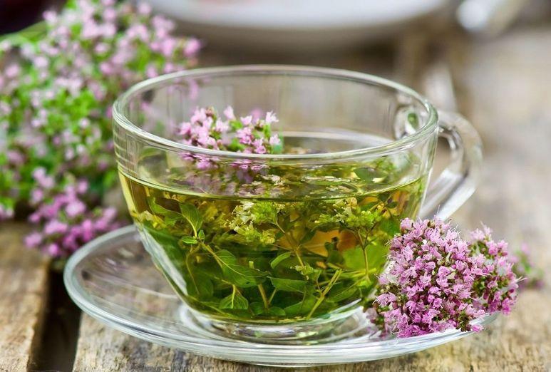 Польза травяных чаев, правила сбора и хранения трав