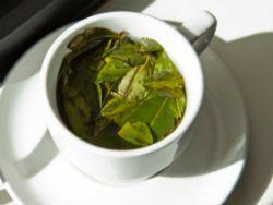 В любимом чае итальянцев обнаружен кокаин