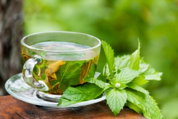 Зачем употреблять чай из мяты?