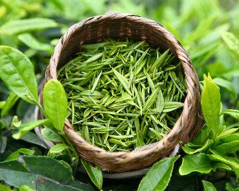 Ес отменит пошлины на поставки зеленого чая и саке из Японии