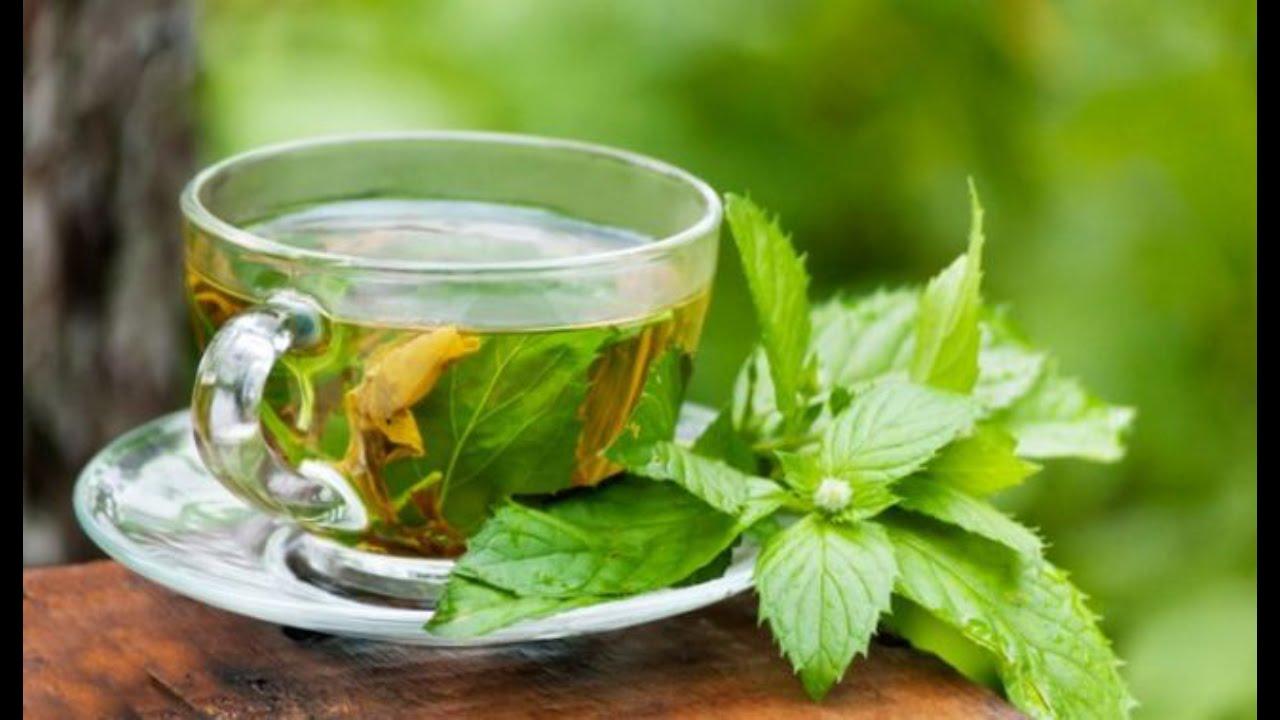 Чай и менструации: что общего