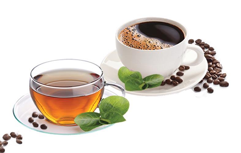 Кофеин в чае и кофе — сходства и различия