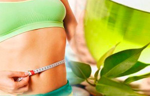 Чай для похудения: польза или вред?