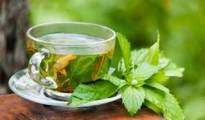 Почему в жару полезно пить зеленый чай