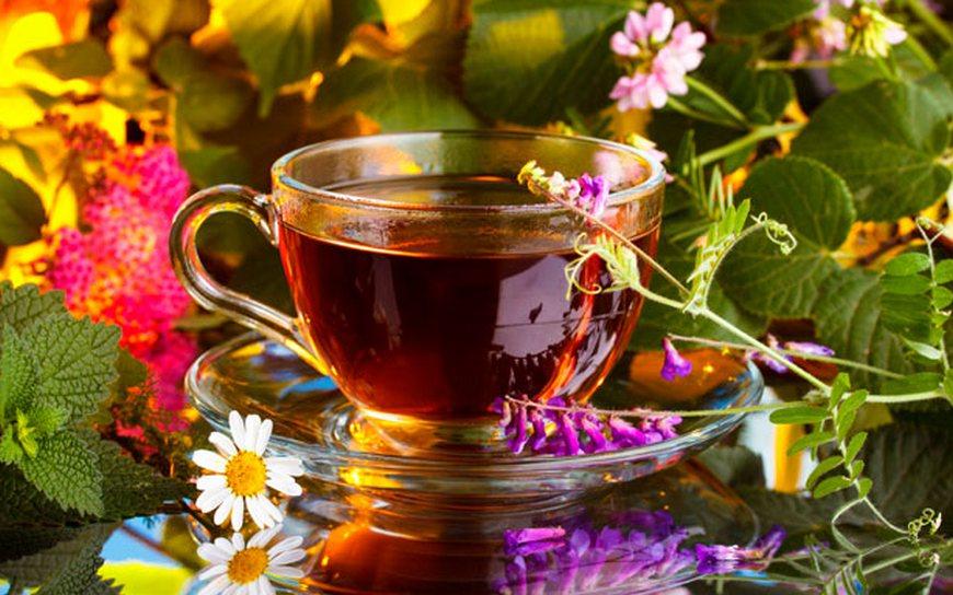 Преимущества травяных чаев