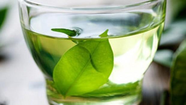 Зеленый чай может помочь в разработке новых лекарств против рака