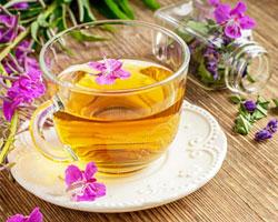 Иван-чай для сохранения молодости и красоты