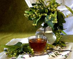 Липовый чай против весеннего нездоровья
