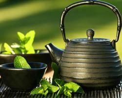 Усовершенствование процесса обработки чайного листа