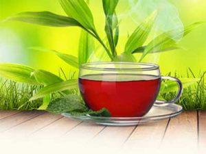 Монастырский чай от диабета: чем так полезно средство для лечения?