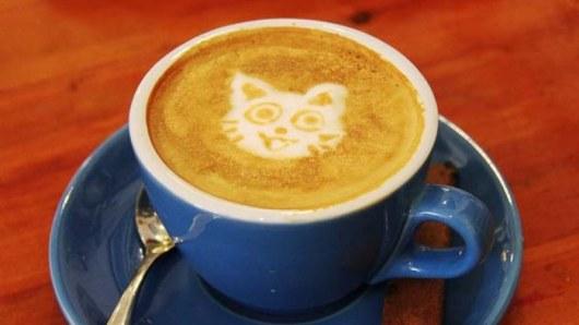 Кому вредны, а кому полезны чай и кофе с молоком