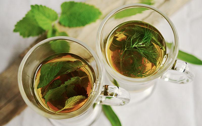 Друг здоровью — мятный чай